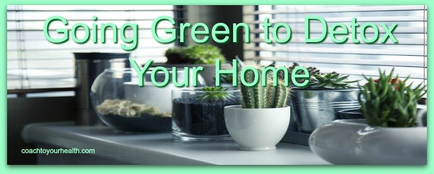 Going Green To Detox Your Home